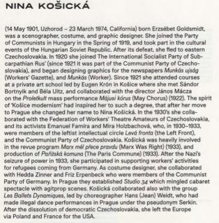 nina_kosicka_1.png