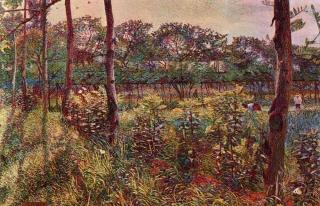 1908-4.jpg